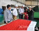 Xinhai wear-resistant rubber as liners of slurry pump