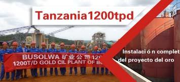 Xinhai Tanzania 1200tpd Gold CIL Plant Construction Finished