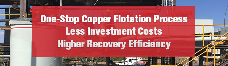 Xinhai copper flotation process