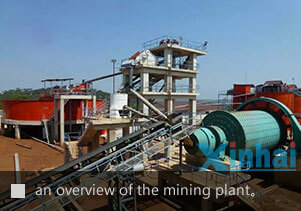 an overview of Xinhai Tanzania gold processing plant