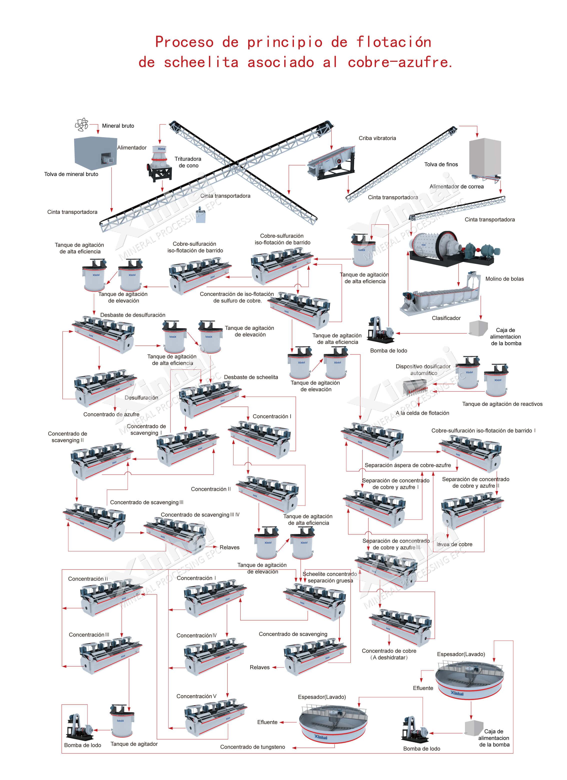 Flotación de Scheelita